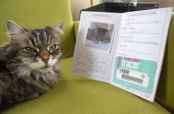 http://www.ugrapro.ru/wp-content/uploads/2014/02/cat-passport-3-610x400.jpg