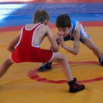 Турнир по вольной борьбе на призы губернатора Орловщины завершился победой местных спортсменов