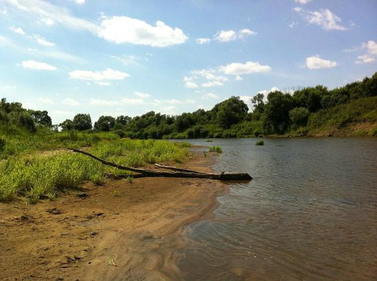 ВЮгре ищут 10-летнего ребенка. Его вещи остались наберегу реки